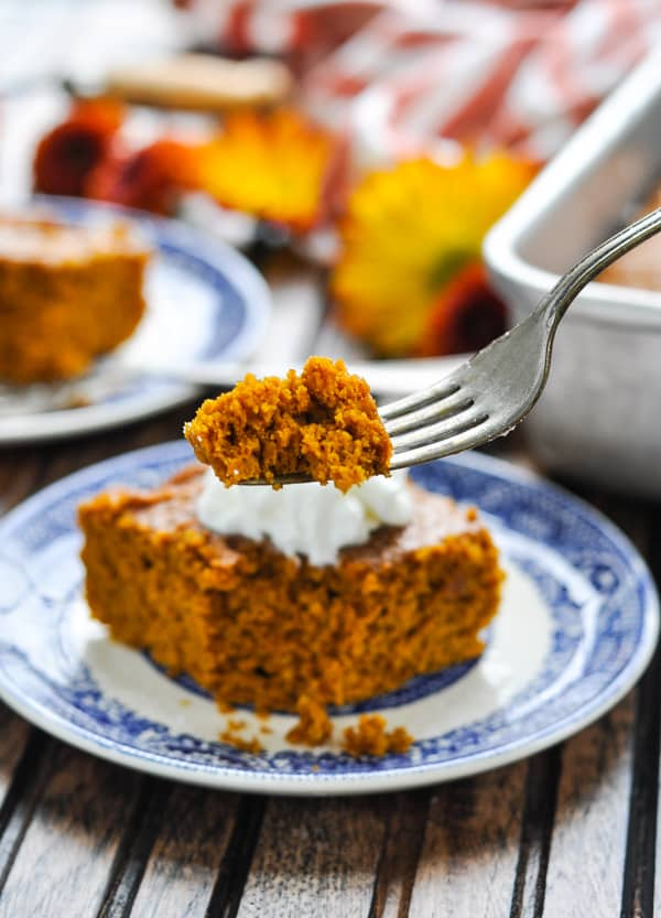 2-Ingredient-Pumpkin-Gingerbread-11