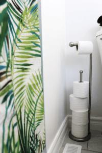 nickel toilet paper holder beside toilet