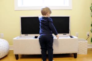Home Basics Collapsible Storage Bins